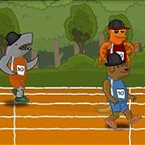 animal-raceway