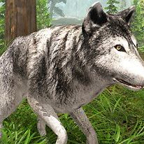 wolf-simulator-wild-animals-3d