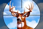 Deer Hunter Training Camp
