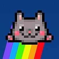 Kitten Force