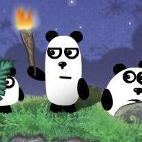 3-pandas-2-night